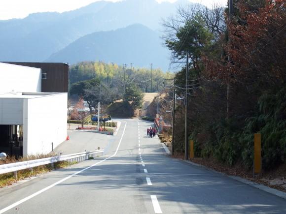 広島ルーキー弥山バックに走る